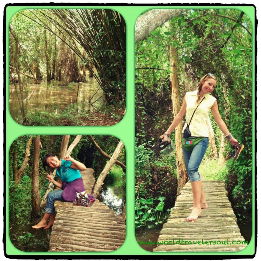 De ruta por los senderos y manglares.
