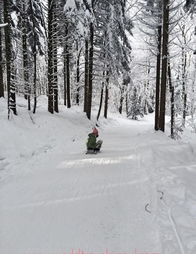 trineo suiza